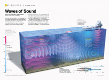 National Geographic Noisy Ocean