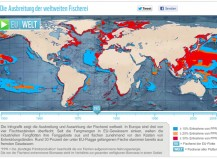 WWF Weltweiter Fischfang